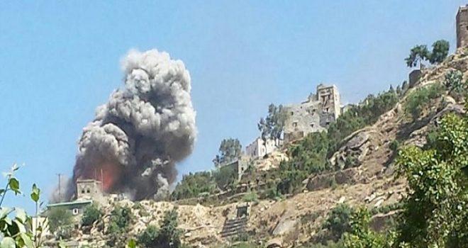Saudi warplanes include livestock as targets while Yemen hungers